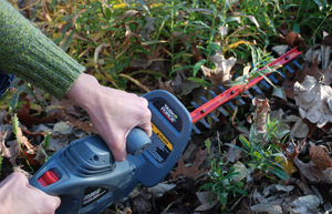using a hedge trimmer to trim perennials